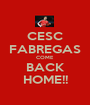 CESC FABREGAS COME BACK HOME!! - Personalised Poster A1 size