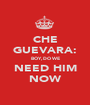 CHE GUEVARA: BOY, DO WE NEED HIM NOW - Personalised Poster A1 size