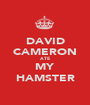 DAVID CAMERON ATE MY HAMSTER - Personalised Poster A1 size