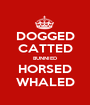 DOGGED CATTED BUNNIED HORSED WHALED - Personalised Poster A1 size