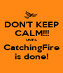 DON'T KEEP CALM!!! UNTIL CatchingFire is done! - Personalised Poster A1 size