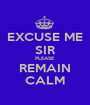 EXCUSE ME SIR PLEASE REMAIN CALM - Personalised Poster A1 size