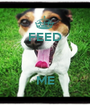 FEED    ME - Personalised Poster A1 size