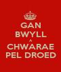 GAN BWYLL A CHWARAE PEL DROED - Personalised Poster A1 size