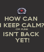 HOW CAN  I KEEP CALM? CM PUNK ISN'T BACK  YET! - Personalised Poster A1 size
