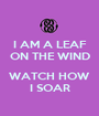 I AM A LEAF ON THE WIND  WATCH HOW I SOAR - Personalised Poster A1 size