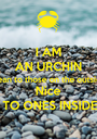 I AM AN URCHIN mean to those on the outside Nice TO ONES INSIDE - Personalised Poster A1 size