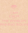 I AM CALM BUT THE WORLD'S SPINNING 'ROUND - Personalised Poster A1 size