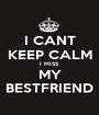 I CANT KEEP CALM I MISS MY BESTFRIEND - Personalised Poster A1 size