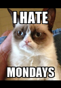 I HATE MONDAYS - Personalised Poster A1 size