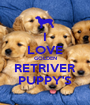 I LOVE GOLDEN RETRIVER PUPPY'S - Personalised Poster A1 size