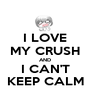 I LOVE MY CRUSH AND I CAN'T KEEP CALM - Personalised Poster A1 size