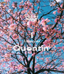 I love you Quentin   - Personalised Poster A1 size