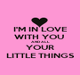 I'M IN LOVE WITH YOU  AND ALL YOUR LITTLE THINGS - Personalised Poster A1 size