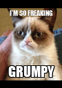 I'M SO FREAKING GRUMPY - Personalised Poster A1 size