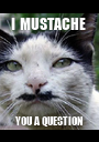 I  MUSTACHE  YOU A QUESTION - Personalised Poster A1 size