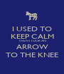 I USED TO KEEP CALM THEN I TOOK AN ARROW TO THE KNEE - Personalised Poster A1 size