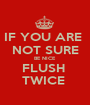 IF YOU ARE  NOT SURE BE NICE  FLUSH  TWICE  - Personalised Poster A1 size