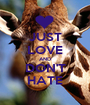JUST LOVE AND DON'T HATE - Personalised Poster A1 size