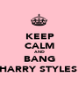 KEEP CALM AND BANG HARRY STYLES  - Personalised Poster A1 size