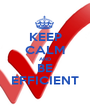 KEEP CALM AND BE EFFICIENT - Personalised Poster A1 size