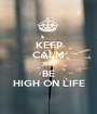 KEEP CALM AND BE HIGH ON LIFE - Personalised Poster A1 size