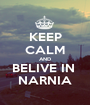 KEEP CALM AND BELIVE IN  NARNIA - Personalised Poster A1 size