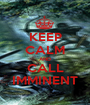 KEEP CALM AND CALL IMMINENT - Personalised Poster A1 size