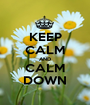 KEEP CALM AND CALM DOWN - Personalised Poster A1 size