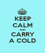 KEEP CALM AND CARRY A COLD - Personalised Poster A1 size