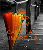 KEEP CALM AND CARRY AN  UMBRELLA - Personalised Poster A1 size