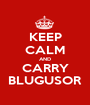 KEEP CALM AND CARRY BLUGUSOR - Personalised Poster A1 size