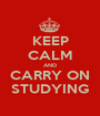 KEEP CALM AND CARRY ON STUDYING - Personalised Poster A1 size