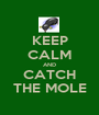 KEEP CALM AND CATCH THE MOLE - Personalised Poster A1 size