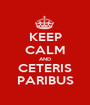 KEEP CALM AND CETERIS PARIBUS - Personalised Poster A1 size