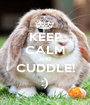 KEEP CALM AND CUDDLE! :) - Personalised Poster A1 size