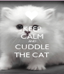KEEP CALM AND CUDDLE THE CAT - Personalised Poster A1 size