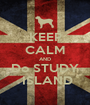 KEEP CALM AND Do STUDY  ISLAND - Personalised Poster A1 size
