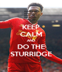 KEEP CALM AND DO THE STURRIDGE - Personalised Poster A1 size