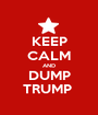 KEEP CALM AND DUMP TRUMP  - Personalised Poster A1 size