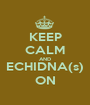 KEEP CALM AND ECHIDNA(s) ON - Personalised Poster A1 size