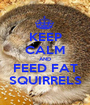 KEEP CALM AND FEED FAT SQUIRRELS - Personalised Poster A1 size