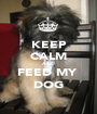 KEEP CALM AND FEED MY  DOG - Personalised Poster A1 size