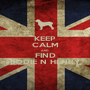 KEEP CALM AND FIND BODIE N HENRY - Personalised Poster A1 size