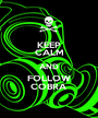 KEEP CALM AND FOLLOW COBRA - Personalised Poster A1 size