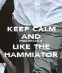 KEEP CALM AND FREE BALLS IT LIKE THE HAMMIATOR - Personalised Poster A1 size