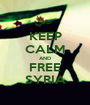 KEEP CALM AND FREE SYRIA - Personalised Poster A1 size