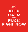 KEEP CALM AND FUCK RIGHT NOW - Personalised Poster A1 size