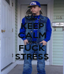 KEEP CALM AND FUCK STRESS - Personalised Poster A1 size