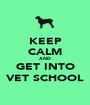 KEEP CALM AND GET INTO VET SCHOOL - Personalised Poster A1 size